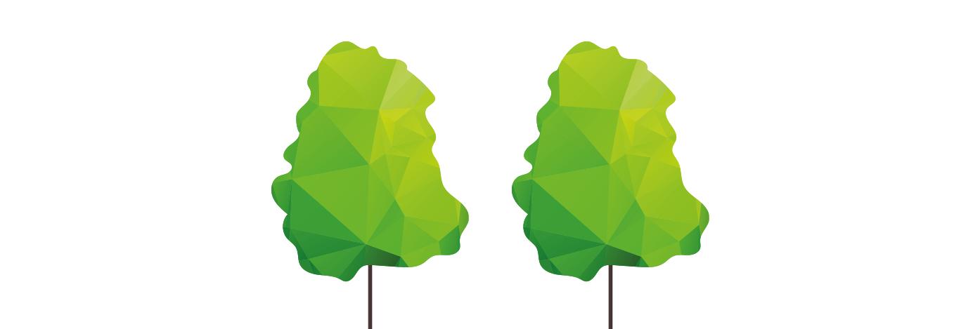 Wald für Sachsen